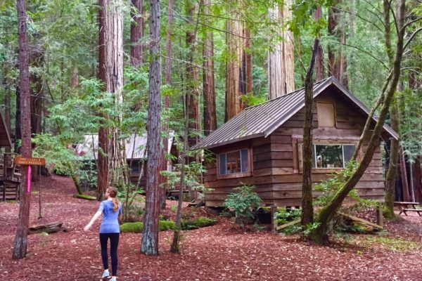 Travel: Camp Liahona Redwoods